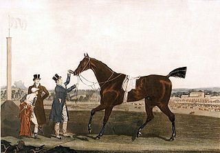 Tiresias (horse) British Thoroughbred racehorse