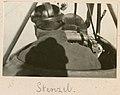 Title- Stenzel (9315805050).jpg