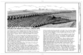 Title Sheet - Arlington Heights Citrus Landscape, Southwestern portion of city of Riverside, Riverside, Riverside County, CA HAER CAL,33-RIVSI,7- (sheet 1 of 5).png