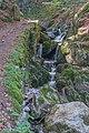 Todtnau - Wasserfallsteig an der oberen Wiese (Hebelweg) Bild 4.jpg