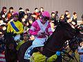 Tokyo Daishoten Day at Oi racecourse (31608966430).jpg
