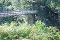 Tongariro River (3).JPG