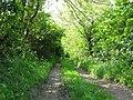 Track, Creighton's Green Road near Holywood - geograph.org.uk - 810214.jpg