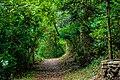 Trail 5 islamaabd.jpg
