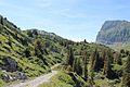 Trail to Silberenalp - panoramio (28).jpg