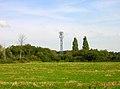 Transmitter Tower near Crockerhill - geograph.org.uk - 236250.jpg