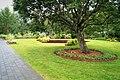 Trees, flowers and grass at Reykjavík botanical garden.jpg