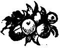 Trento con il sacro concilio et altri notabili (page 445 crop) 1.jpg