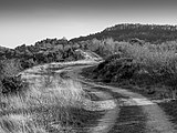 Treviño - Cerro de Treviño - Camino 01.jpg
