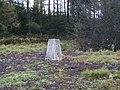 Triangulation pillar n Dalby Forest - geograph.org.uk - 290433.jpg