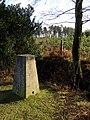 Triangulation pillar on Hart Hill, New Forest - geograph.org.uk - 316821.jpg