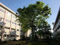 津南中等教育学校 後期課程