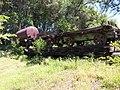 Tuolumne, CA 95379, USA - panoramio (2).jpg