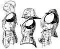 Types of Breast-Armors 092 094.jpg