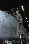 U.S. Air Force Lt. Col. Clinton Eichelberger, the commander of the 81st Fighter Squadron, prepares to step into an A-10 Thunderbolt II aircraft during Ramstein Rover 2012 at Spangdahlem Air Base, Germany, Sept 120904-F-GX122-099.jpg