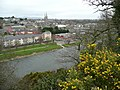 Vantage point for Enniscorthy - geograph.org.uk - 703939.jpg