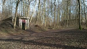 Vestereng - Two of the many WW II bunkers in the woodlands on Vestereng.