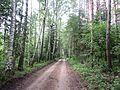 Vievio sen., Lithuania - panoramio (32).jpg