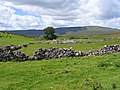 View towards Whernside from Thorns - geograph.org.uk - 706968.jpg