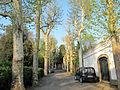 Villa palmieri, ingresso 01.JPG