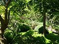 Vue du Jardin Albert Kahn 2.JPG