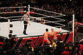 WWE Raw IMG 2847 (11702148114).jpg