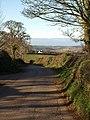 Waddeton Road at Great Tree - geograph.org.uk - 1188280.jpg