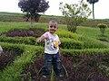 Waiting a little boy(bogra, BD).jpg