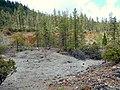 Waldo Mine 1 - Cave Junction Oregon.jpg