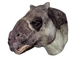 Walk With Beasts exhibition Ancylotherium model.jpg