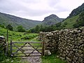 Wall and Gate, Stonethwaite - geograph.org.uk - 475559.jpg