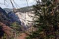 Wasserofen Wasserfall Äste.jpg