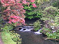 Waterfall, Japanese garden.JPG