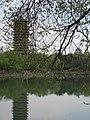 Weiming Lake, Peking University, 2011042211.jpg