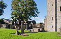 Wexford Selskar Priory Tower and Double Nave 2012 10 03.jpg