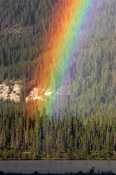 File:WhereRainbowRises.jpg Rainbow over mountain of cedar trees