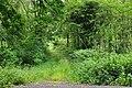 White Moss track entrance - geograph.org.uk - 1395092.jpg