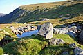 Wicklow Mountains National Park Glenealo River 09.JPG