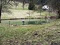 Wilhelmsfeld - Belschbach 2013-03-10 17-41-38.JPG