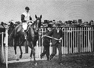 William the Third (horse) British-bred Thoroughbred racehorse