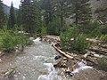 Wolf Creek Trail - Bridger Teton NF - 2017.jpg