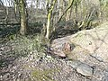 Woodland Stream crosses Footpath - geograph.org.uk - 357624.jpg