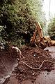 Worker drills solid rock-557735.jpg