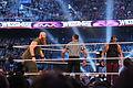 WrestleMania XXX IMG 4727 (13768943174).jpg