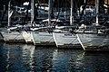 Zadar Harbor (123116815).jpeg