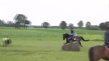 File:Zadinus - eventing training bij Tim Lips 25-06-2012.webm