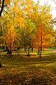 Zheleznodorozhnyy rayon, Novosibirsk, Novosibirskaya oblast', Russia - panoramio (13).jpg
