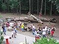 Zoo Olomouc - goat run.jpg