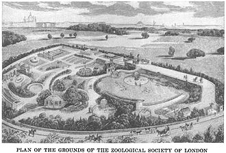 Zoological Society of London - Plan of the Zoological Society of London (1829)