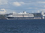 Zuiderdam at Pier 27 in Port of Tallinn 12 August 2016.jpg